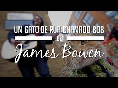 Um gato de rua chamado Bob de James Bowen (#desafiolivroseseusfilmes)