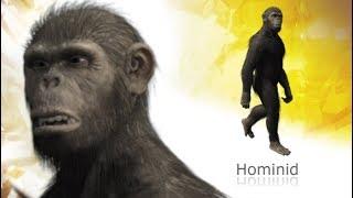 Primeval - Australopithecus