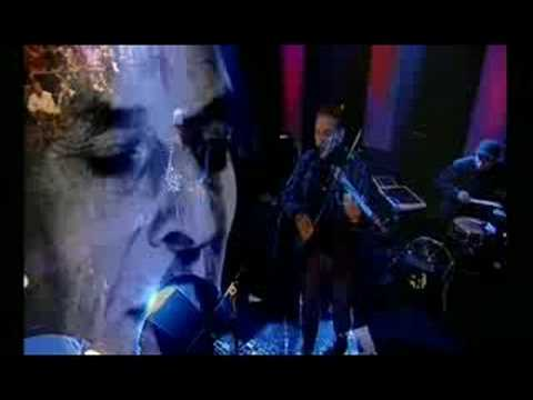 Tekst piosenki John Cale - Venus In Furs po polsku