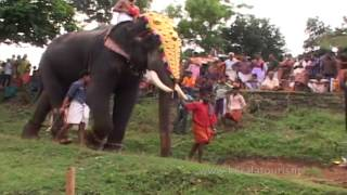 Click to view the video of Vela at Mangottu Bhagavathi Temple