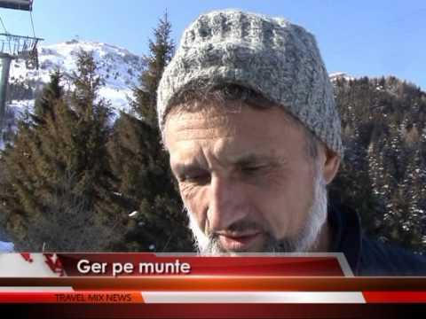 Ger pe munte