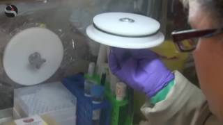 Il test anti-Zika negli USA è firmato dall'italiana Diasorin