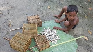 Traditional Fish Trapping Tools Making & Catching Tiny Country Fish With Beautiful Nature