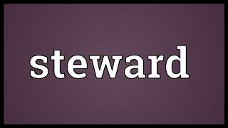 Steward Meaning