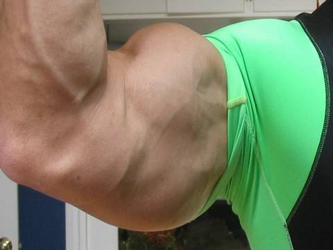 dips - http://www.scoobysworkshop.com If you want huge arms, dont make the mistake of just doing biceps exercises! The triceps is a bigger muscle and it responds be...