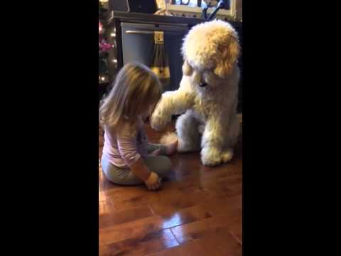 Little Girl Helps Train The Dog ^^