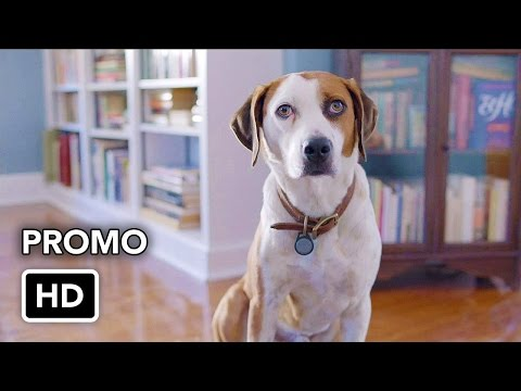 "Downward Dog (ABC) ""We're in This Together"" Promo HD"