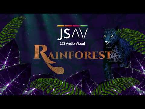 video JSAV Rainforest