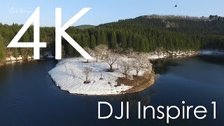 4K空撮 / 中子池の桜雨