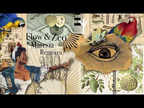 Flow & Zeo - Maresia (Sonic Future Remix)
