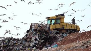 Landfill facts and statistics - A global problem