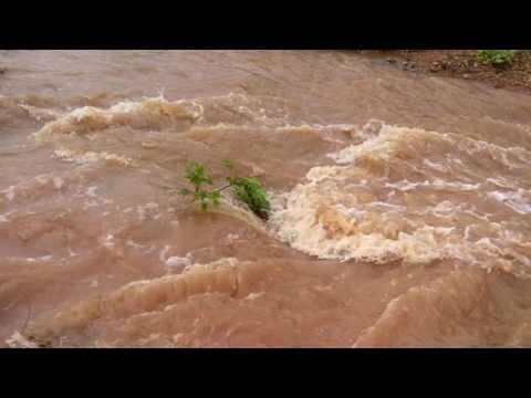 Chuva no nordeste do Brasil. Em Campo Alegre do Fidalgo -Piauí