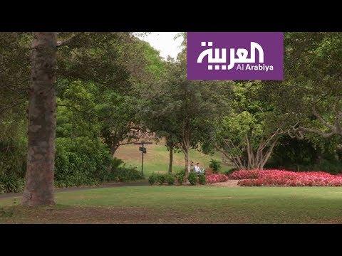 العرب اليوم - شاهد: جمال الحديقة النباتية الملكية في سيدني