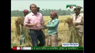 Farmers' frustrated, they are not geting actual price of rice.