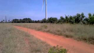 Tirunelveli India  city pictures gallery : Fields of windmills around Alangulam,Tirunelveli,India