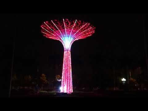 Lắp đặt cây sáng cho thành phố Bắc Ninh