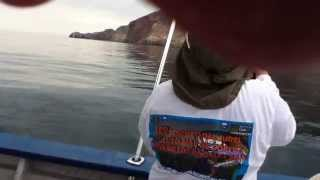 Torneo de Pesca Bahia de Los Angeles 1 lugar categoria infantil 13 julio 2013.