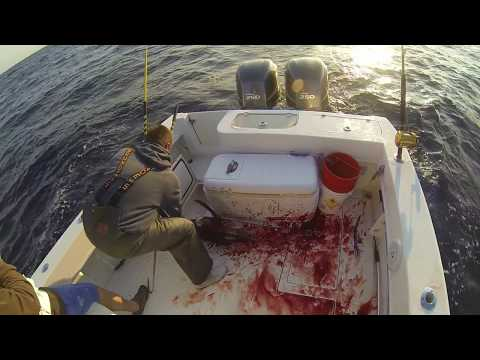 Year In Review Surf, Kayak and Boat Fishing 2014 Part 1