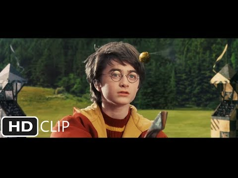 First Quidditch Match | Harry Potter and the Sorcerer's Stone
