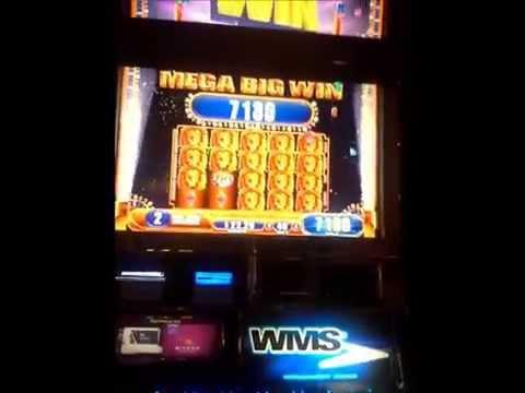 King of Africa MEGA BIG WIN slot machine WMS