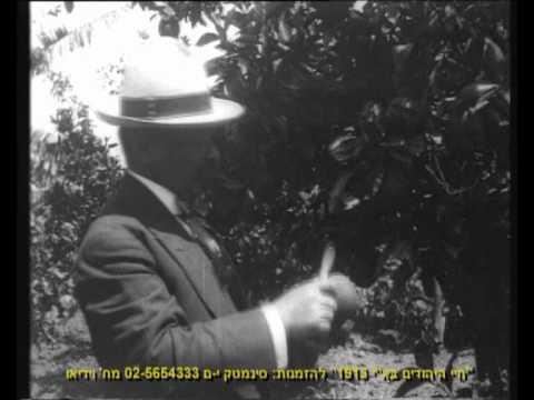 פתח תקווה בשנת 1913