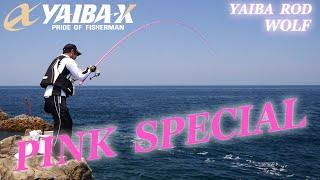 YAIBA-X TV #8 「YAIBA ROD WOLF  PINK SPECIAL」