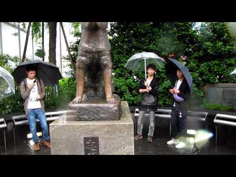 Buscando  a Hachiko  Shibuya Tokio  Japon