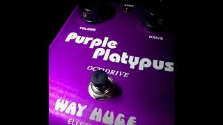 [HQ] Original Way Huge Purple Platypus PP-1 Octidrive Fuzz Pedal mkI : Michael Vilogi Demo