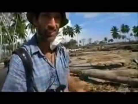 The Black Road - Perjuangan Aceh (Full Aceh Documentary)