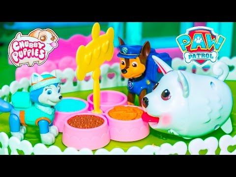 CHUBBY PUPPIES Dog Park Chubby Puppy + Paw Patrol + Wiggles Video Toys Unboxing (видео)