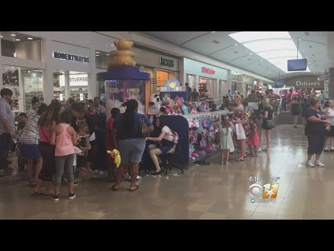 Build-A-Bear Sale So Popular Company Had To Shut It Down