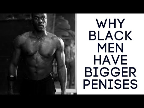 Why Black Men Have Bigger Penises