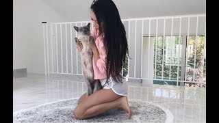The day has finally come where bae and I moved in together in our new house. He came to join me all the way from the US to the French Riviera, #couplegoals! :) I'm also giving you an empty house tour vlog since many of you were requesting it. I still remember my first apartment when I first moved to France, it was only one room and 30 square meters small. What I'm trying to say with this video is that you should never give up on your dreams, never let people's opinion stop you from achieving your goals and never ever quit, no matter how challenging it is at a given time.This marks a new start and a new chapter in our journey. Thank you for your continuous support. It never goes unnoticed and it truly warms my heart! ________________Follow me on Instagram:https://instagram.com/cocoliliiShop my Waist Trainers: https://www.waistcartel.comWe're close to 500k! Subscribe here: http://bit.ly/1ob99iQ Check out my french channel here: http://www.youtube.com/cocolilifrenchWhere to find me:♥ MY SNAPCHATlili.lizi♥ INSTAGRAM@cocoliliiBUSINESS INQUIRIES: COCOLILIPR@GMAIL.COM_______________________POPULAR VIDEOS:My Morning Routine: http://bit.ly/1XPu4L4My Fitness Routine: http://bit.ly/1Sln8VOAt Home Workout  No Equipment: http://bit.ly/2eAbkTbWhat I Ate Today  Healthy Meal Ideas : http://goo.gl/Myed31Waist Training / Corset Training: http://goo.gl/WQ1b2TFlawless Skin Foundation Routine : http://goo.gl/27CmuPFitness & Weight Loss Motivation : http://goo.gl/6dRta3How to get a Flat Stomach Fast: http://bit.ly/1nMMKwCFashion Try On Haul: http://bit.ly/2dPBGPY--------------------------------------------------------------------FAVORITE PRODUCTS & DISCOUNT CODES• WAIST TRAINER I USE: http://www.waistcartel.com•  BELLAMI HAIR:  http://bit.ly/1T5zY6w  (code COCOLILI)• SIGMA brushes: http://goo.gl/LzEFv2 (code cocolili)• Face Cleansing Brushes: http://goo.gl/lXmHgl (code COCOLILI for 70% off any face and body brushes)• Beenigma Cream: http://goo.gl/tLkT4Y• Banish Acne Scars: http://bit.ly/