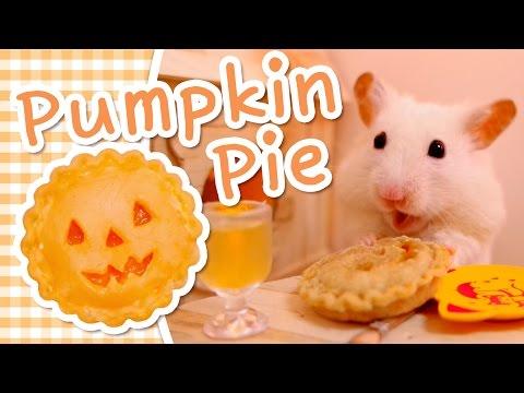 🎃 Pumpkin Pie   HAMSTER KITCHEN 🎃