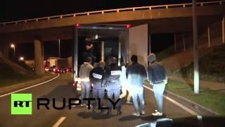 Imigranci w Calais włamują się do ciężarówki, która przewozi niedźwiedzia.
