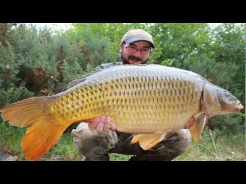 Carp Zone Session - Aug '11, Oct 2011