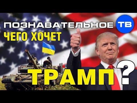 Чего хочет Трамп (Познавательное ТВ Елена Гоголь) - DomaVideo.Ru