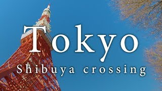 Tokyo in 4K