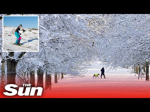 UK weather – Four more inches of 'severe' snow after 'snowiest spell' in two years