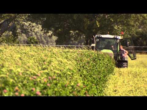 Öko-Landwirtschaft - Gut Brook im Klüzer Winkel bei Wismar