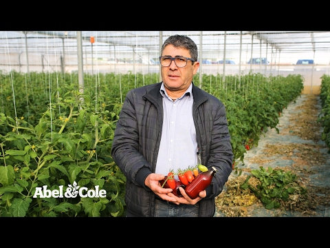 Cherry Tomato Passata, Abel and Cole (330ml)