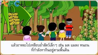 สื่อการเรียนการสอน ธรรมชาติเจ้าเอย ป.3 ภาษาไทย