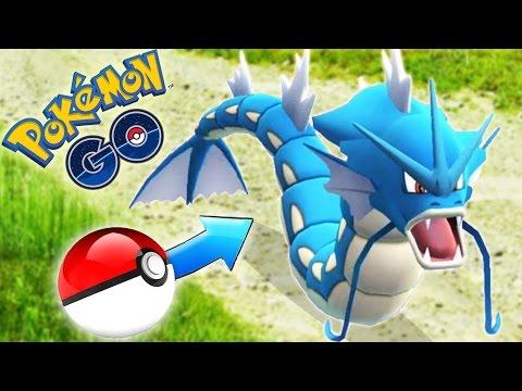 Pokemon Go - GYARADOS 100% Perfect! (400 Magikarp candies) - Thời lượng: 60 giây.