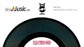 Download Lagu Calusul Dumitru Zamfira fluier) Mp3