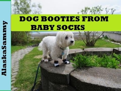 Make Dog Booties From Baby Socks