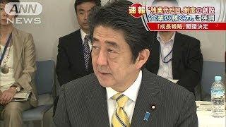 閣議決定アベノミクス第3の矢「新たな成長戦略」14/06/24
