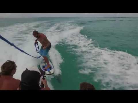 Delfiini tulee ihmettelemään veneilijöiden touhuja ja antaa mallia surfauksesta