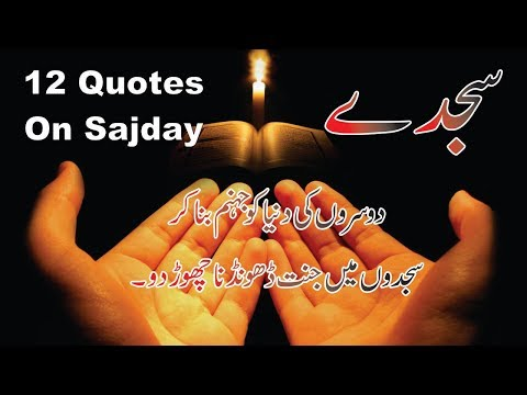 Life quotes - Sajda 12 best life changing quotes in hindi urdu with voice and images  Golden words quotes