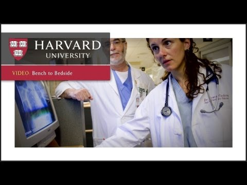 Bench to Bedside – Innovation at Harvard
