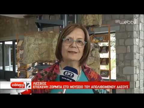 Λέσβος: Επίσκεψη M. Ζορμπά στο μουσείο του απολιθωμένου δάσους | 20/05/2019 | ΕΡΤ
